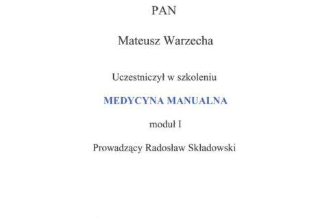 Medycyna Manualna moduł I