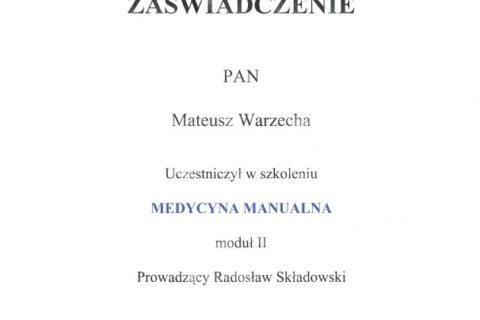 Medycyna Manualna moduł II