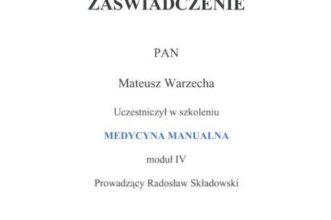 Medycyna Manualna moduł IV