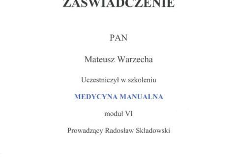 Medycyna Manualna moduł VI