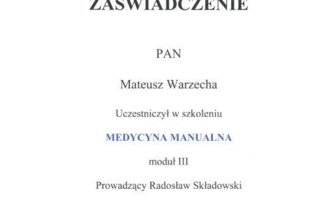 Medycyna Manualna moduł III