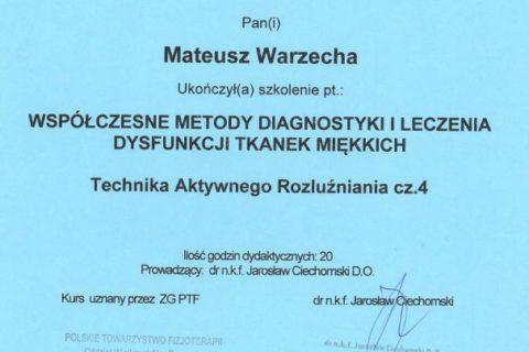 Współczesne metody diagnostyki i leczenia dysfunkcji tkanek miękkich 4